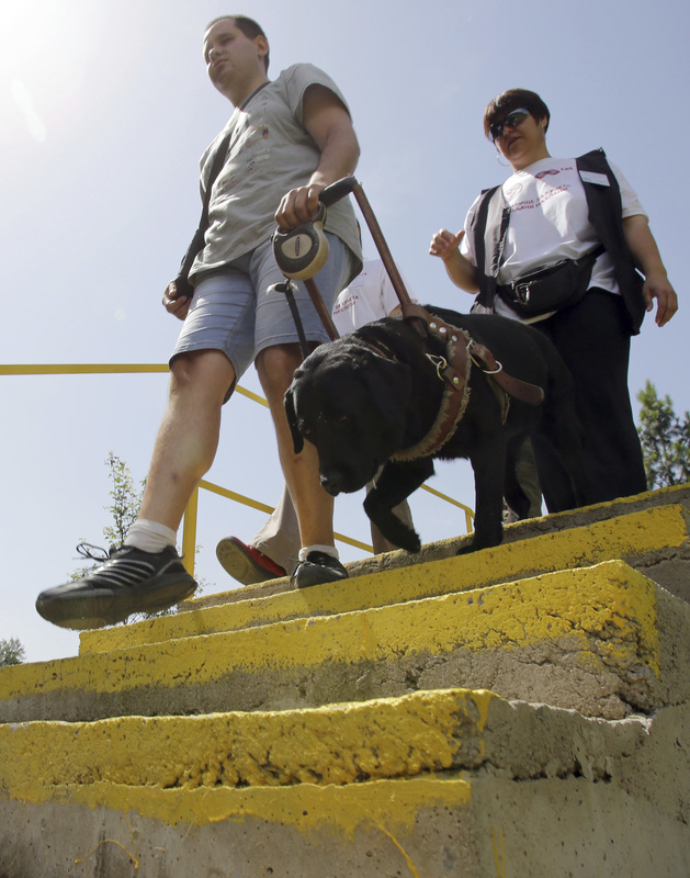 Picture of blind person going down steps with guide dog